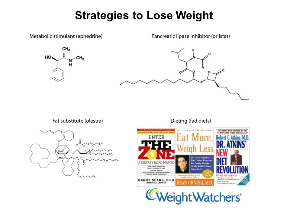 Strategies to Lose Weight