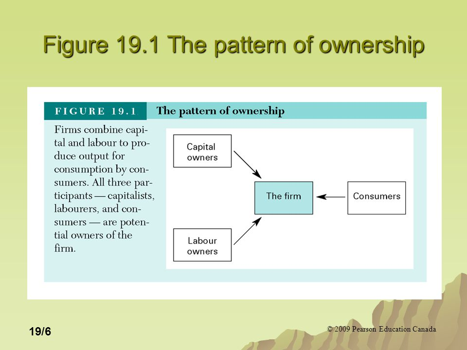 © 2009 Pearson Education Canada 19/7 Three Relationships Between Residual Claimants and Control of the Firm 1.Owner-operated -The person who makes the managerial decisions that affect the firm's profits is the same as the person who lays claim to that profit.