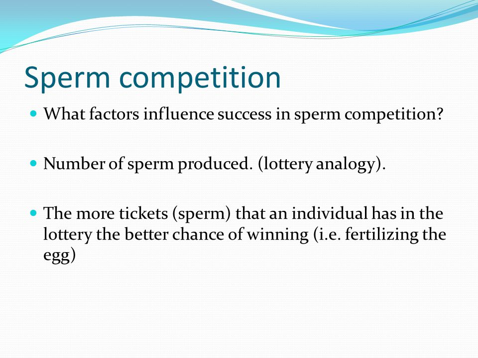 Sperm competition What factors influence success in sperm competition.
