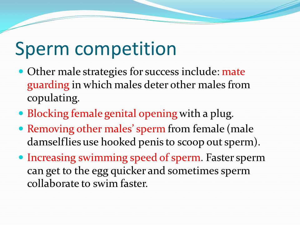 Sperm competition Other male strategies for success include: mate guarding in which males deter other males from copulating.
