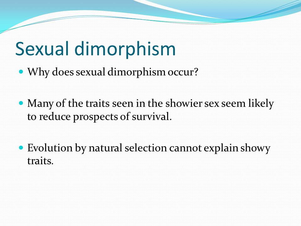 Sexual dimorphism Why does sexual dimorphism occur.