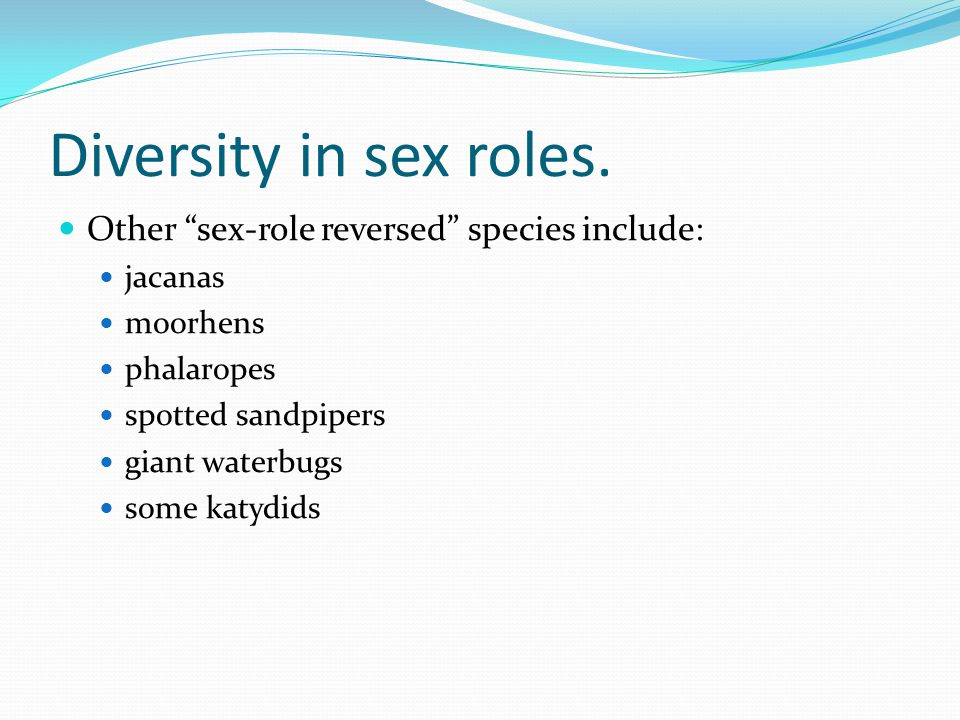 """Diversity in sex roles. Other """"sex-role reversed"""" species include: jacanas moorhens phalaropes spotted sandpipers giant waterbugs some katydids"""