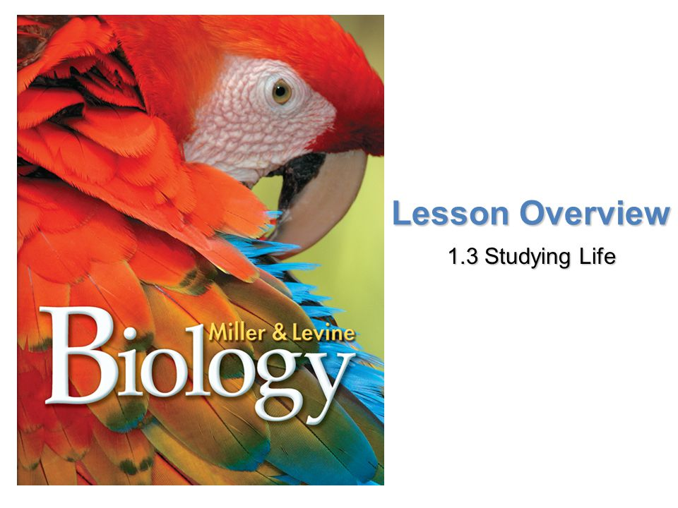 Lesson Overview Lesson Overview Studying Life Lesson Overview 1.3 Studying Life