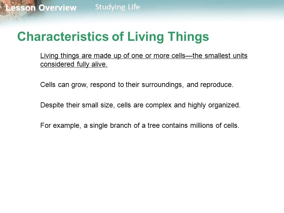 Lesson Overview Lesson Overview Studying Life Characteristics of Living Things Living things are made up of one or more cells—the smallest units consi