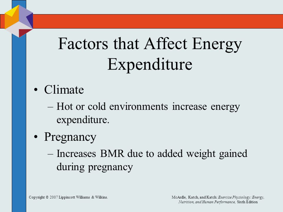 Copyright © 2007 Lippincott Williams & Wilkins.McArdle, Katch, and Katch: Exercise Physiology: Energy, Nutrition, and Human Performance, Sixth Edition Factors that Affect Energy Expenditure Climate –Hot or cold environments increase energy expenditure.