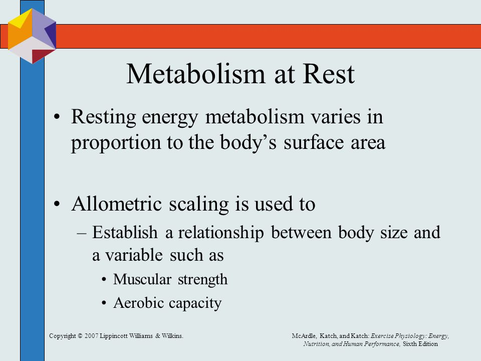 Copyright © 2007 Lippincott Williams & Wilkins.McArdle, Katch, and Katch: Exercise Physiology: Energy, Nutrition, and Human Performance, Sixth Edition Metabolism at Rest Resting energy metabolism varies in proportion to the body's surface area Allometric scaling is used to –Establish a relationship between body size and a variable such as Muscular strength Aerobic capacity