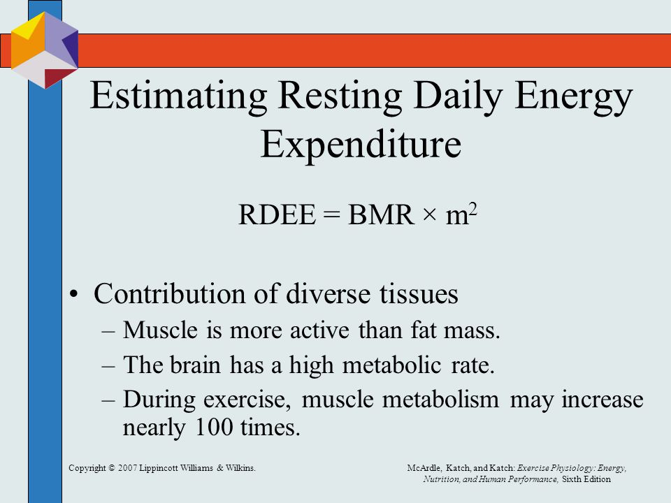 Copyright © 2007 Lippincott Williams & Wilkins.McArdle, Katch, and Katch: Exercise Physiology: Energy, Nutrition, and Human Performance, Sixth Edition Estimating Resting Daily Energy Expenditure RDEE = BMR × m 2 Contribution of diverse tissues –Muscle is more active than fat mass.