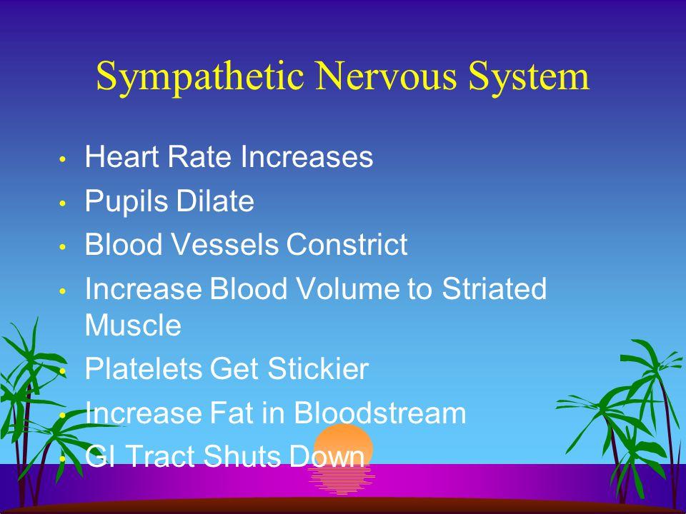 Physiology Central Nervous System Peripheral Nervous System - Somatic (Voluntary) Nervous System - Autonomic Nervous System - Sympathetic - Parasympat