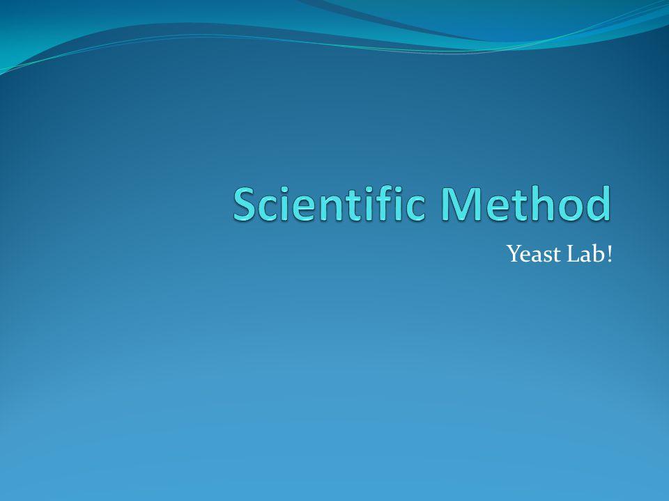 Yeast Lab!