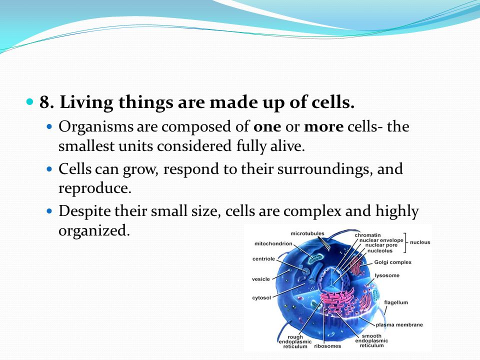 8. Living things are made up of cells.