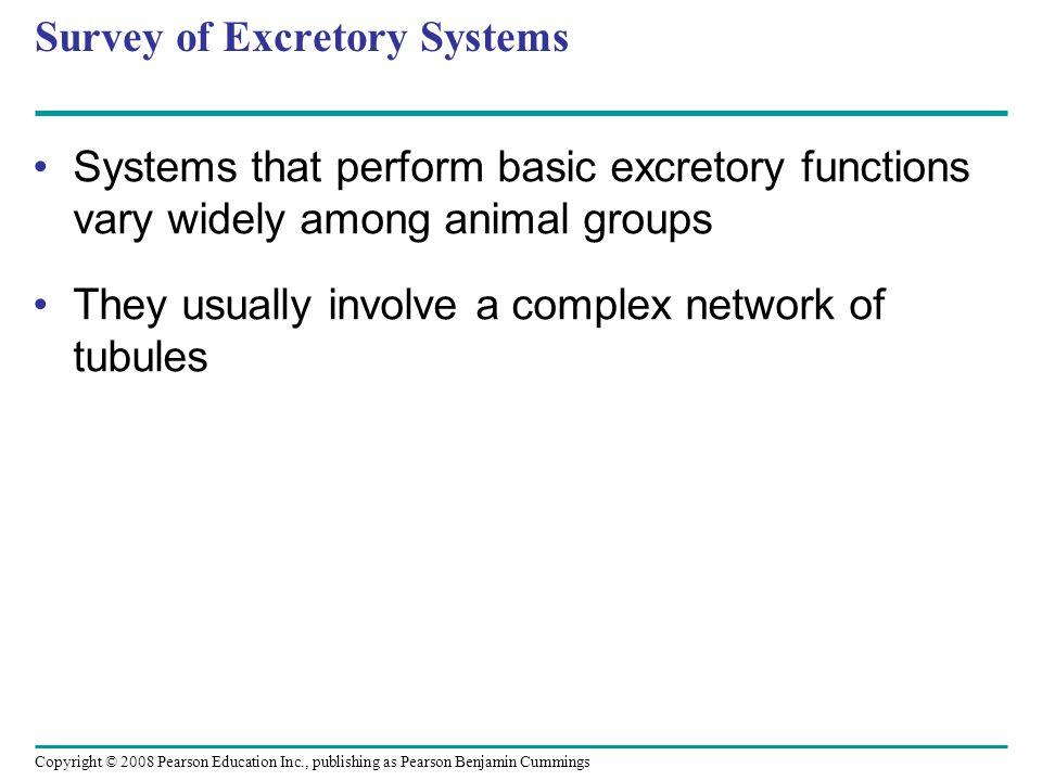 Copyright © 2008 Pearson Education Inc., publishing as Pearson Benjamin Cummings Survey of Excretory Systems Systems that perform basic excretory func