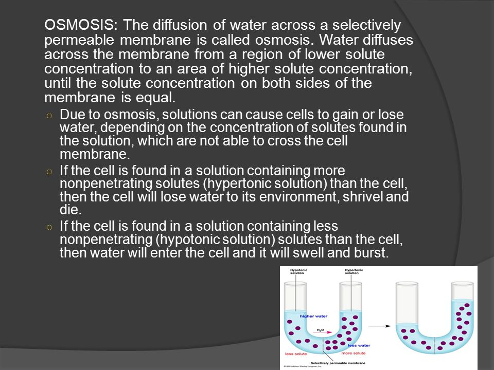 OSMOSIS: The diffusion of water across a selectively permeable membrane is called osmosis.