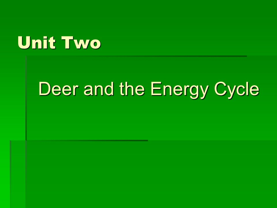 Unit Two Deer and the Energy Cycle Deer and the Energy Cycle