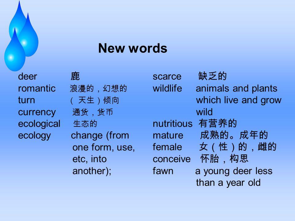 Exercise III.Translation 1.
