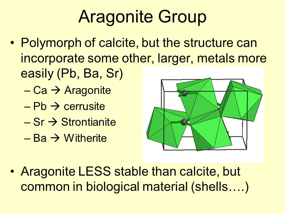 Aragonite Group Polymorph of calcite, but the structure can incorporate some other, larger, metals more easily (Pb, Ba, Sr) –Ca  Aragonite –Pb  cerrusite –Sr  Strontianite –Ba  Witherite Aragonite LESS stable than calcite, but common in biological material (shells….)