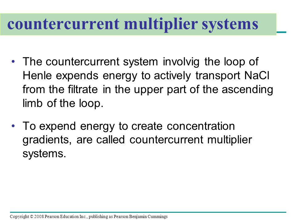 Copyright © 2008 Pearson Education Inc., publishing as Pearson Benjamin Cummings countercurrent multiplier systems The countercurrent system involvig