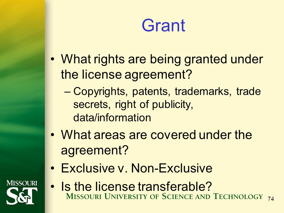 Grant What rights are being granted under the license agreement.
