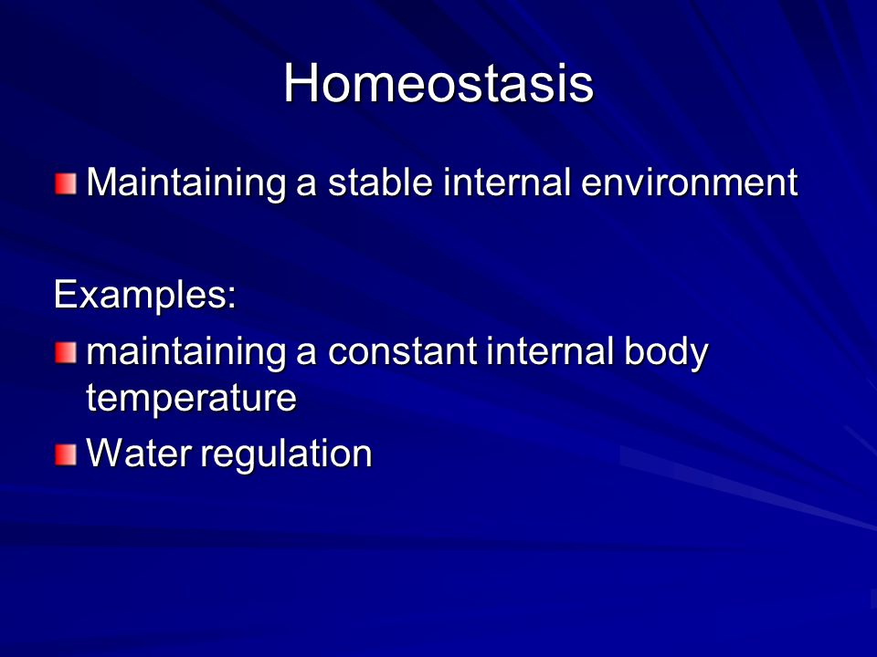 Homeostasis Maintaining a stable internal environment Examples: maintaining a constant internal body temperature Water regulation
