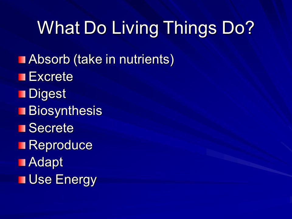 Absorb (take in nutrients) ExcreteDigestBiosynthesisSecreteReproduceAdapt Use Energy