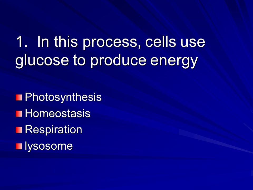 1. In this process, cells use glucose to produce energy PhotosynthesisHomeostasisRespirationlysosome
