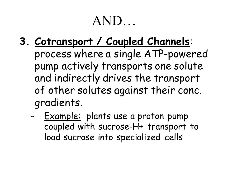 AND… 3.Cotransport / Coupled Channels: process where a single ATP-powered pump actively transports one solute and indirectly drives the transport of other solutes against their conc.