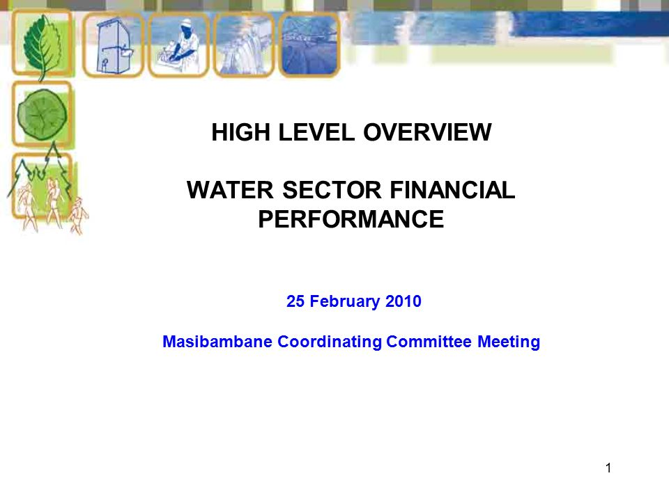 1 HIGH LEVEL OVERVIEW WATER SECTOR FINANCIAL PERFORMANCE 25 February 2010 Masibambane Coordinating Committee Meeting