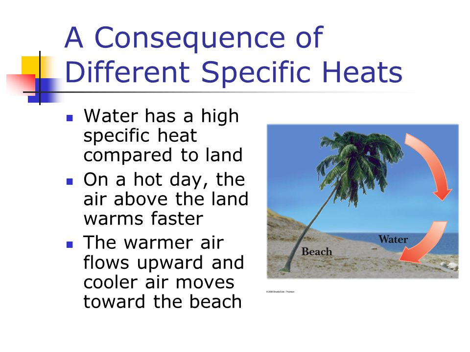 A Consequence of Different Specific Heats Water has a high specific heat compared to land On a hot day, the air above the land warms faster The warmer