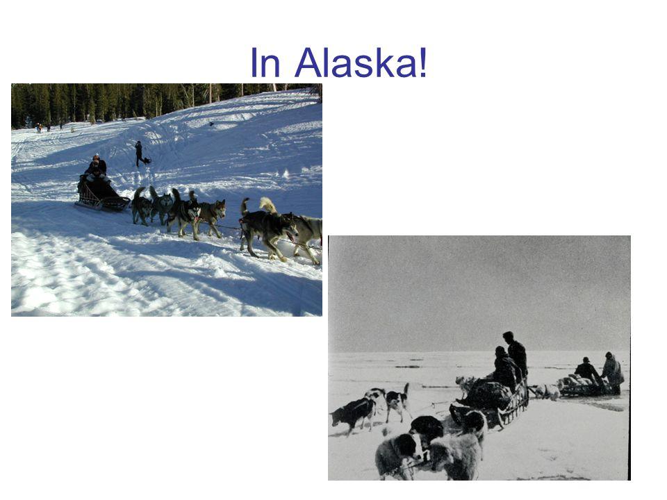 In Alaska!