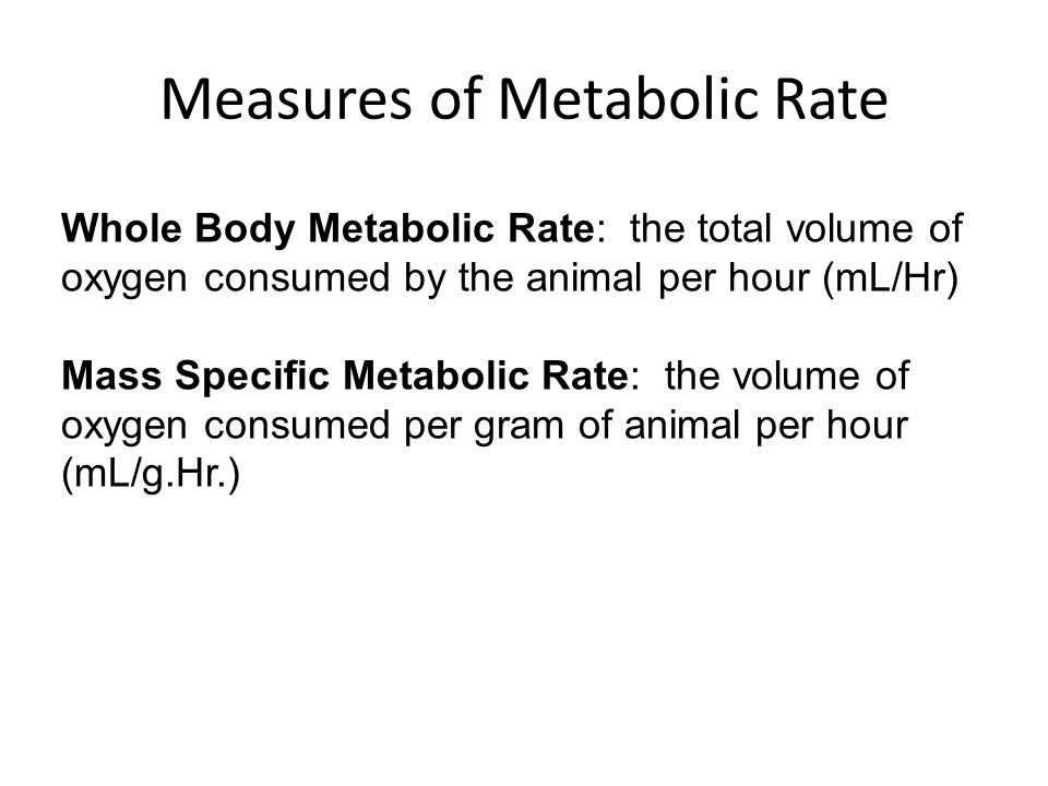Measures of Metabolic Rate Whole Body Metabolic Rate: the total volume of oxygen consumed by the animal per hour (mL/Hr) Mass Specific Metabolic Rate: