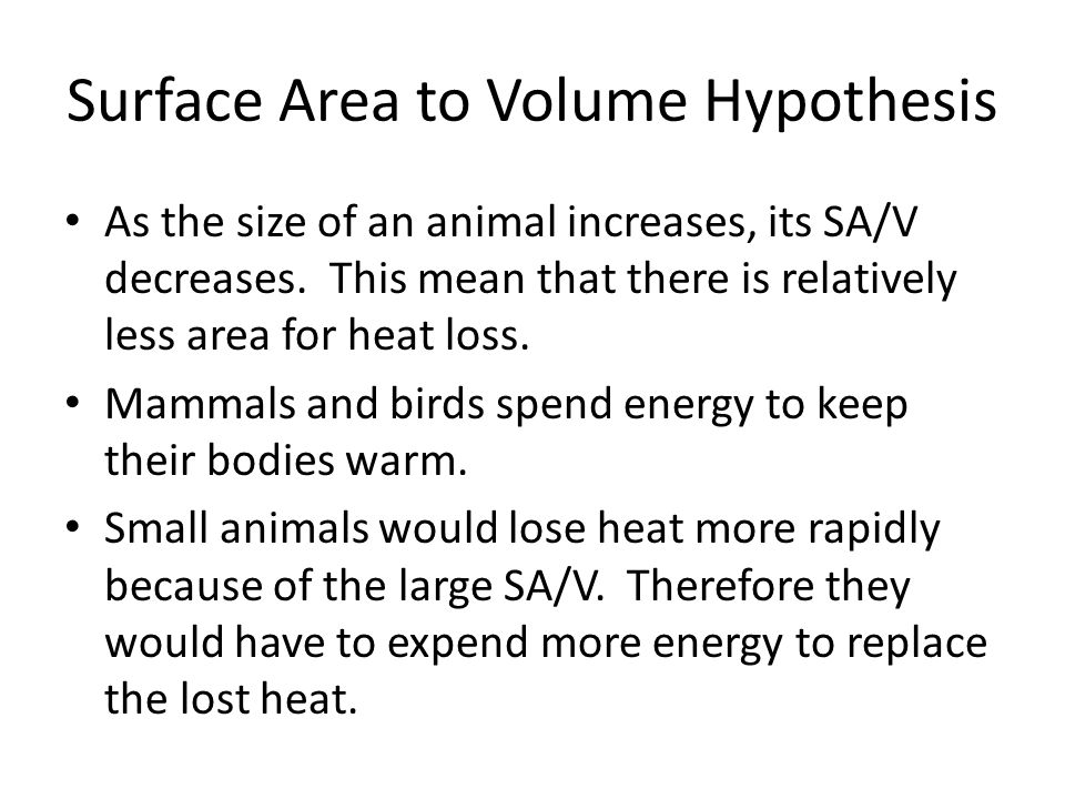 Surface Area to Volume Hypothesis As the size of an animal increases, its SA/V decreases.