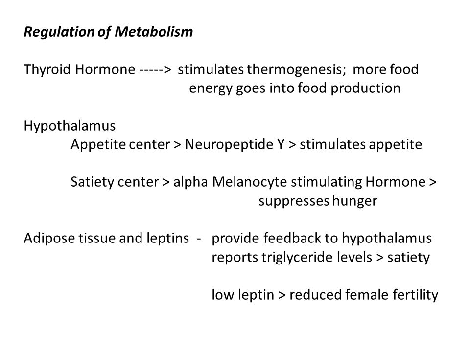 Regulation of Metabolism Thyroid Hormone -----> stimulates thermogenesis; more food energy goes into food production Hypothalamus Appetite center > Neuropeptide Y > stimulates appetite Satiety center > alpha Melanocyte stimulating Hormone > suppresses hunger Adipose tissue and leptins - provide feedback to hypothalamus reports triglyceride levels > satiety low leptin > reduced female fertility