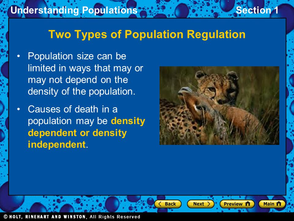 Understanding PopulationsSection 1 Population size can be limited in ways that may or may not depend on the density of the population. Causes of death