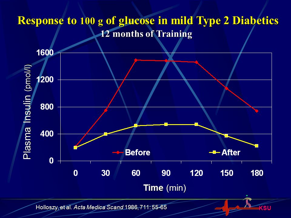 KSU Response to 100 g of glucose in mild Type 2 Diabetics Plasma Insulin (pmol/l) Time (min) 12 months of Training Holloszy, et al. Acta Medica Scand