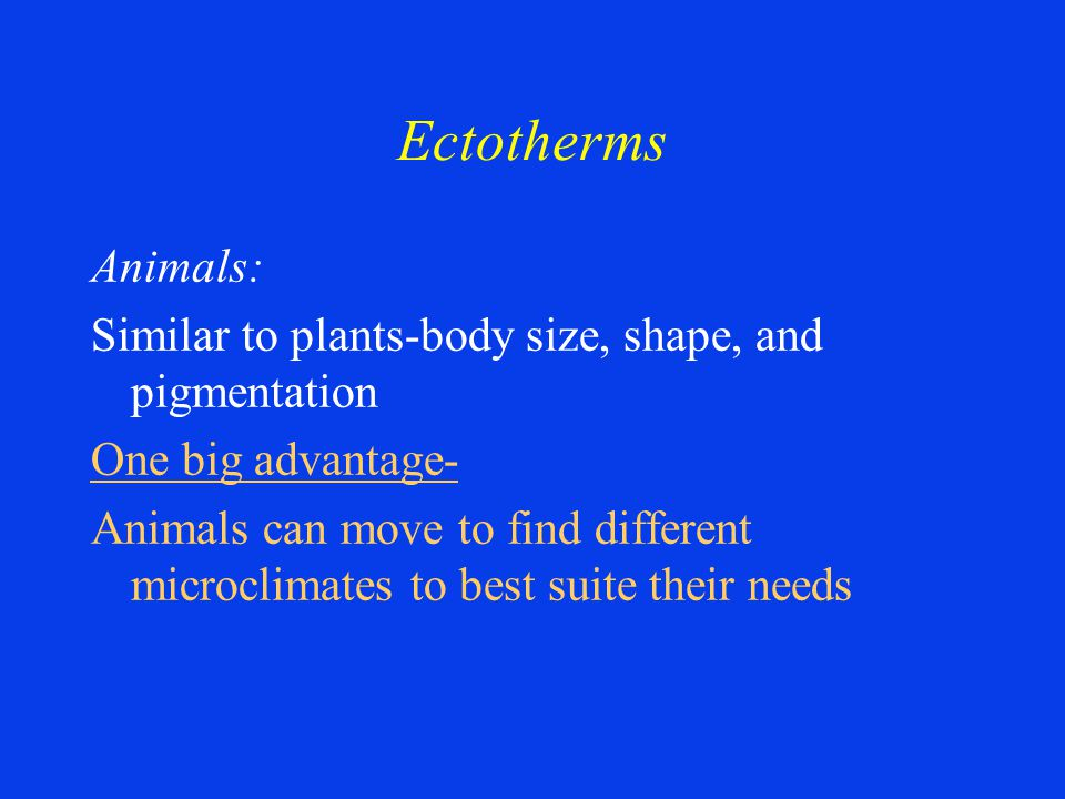 Ectotherms Animals: Similar to plants-body size, shape, and pigmentation One big advantage- Animals can move to find different microclimates to best suite their needs