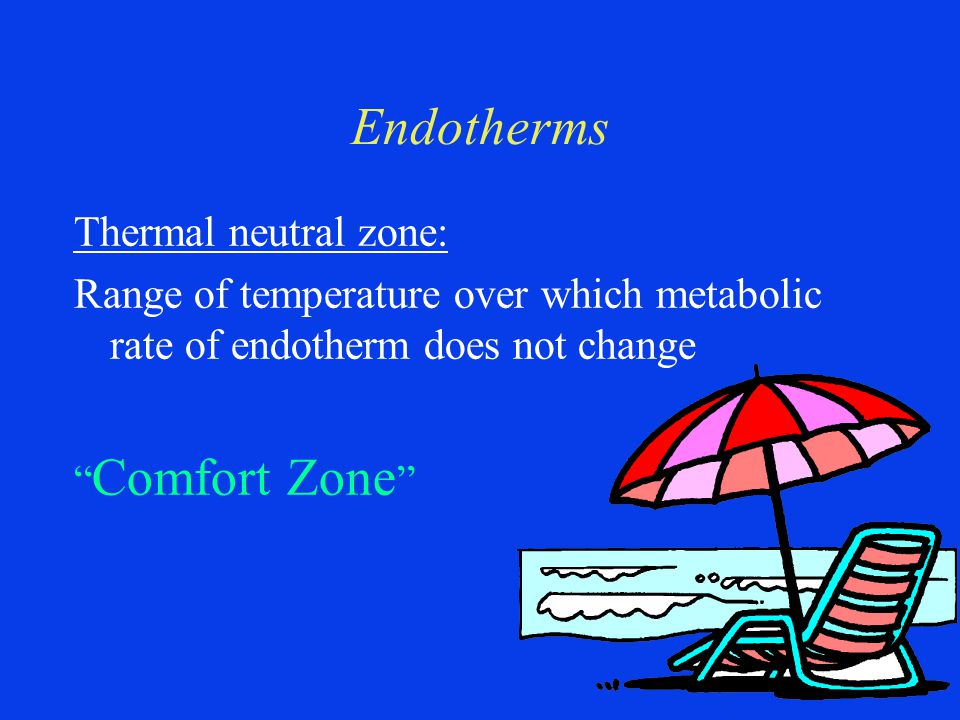 Endotherms Thermal neutral zone: Range of temperature over which metabolic rate of endotherm does not change Comfort Zone