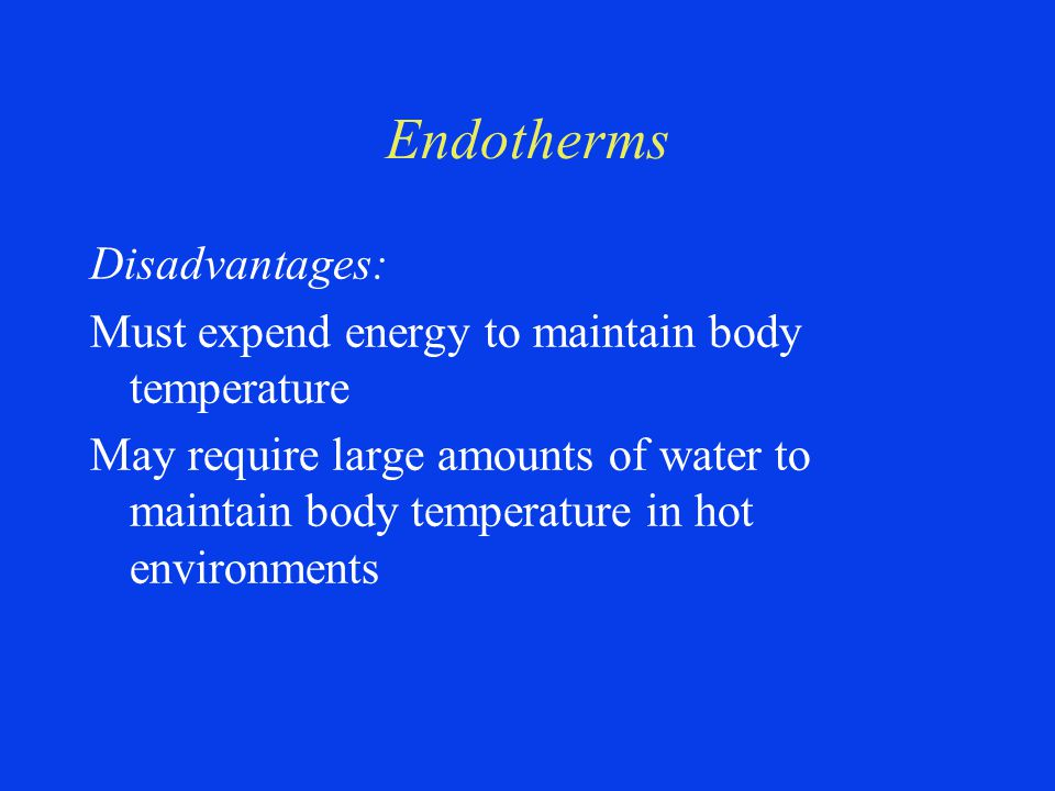 Endotherms Disadvantages: Must expend energy to maintain body temperature May require large amounts of water to maintain body temperature in hot environments