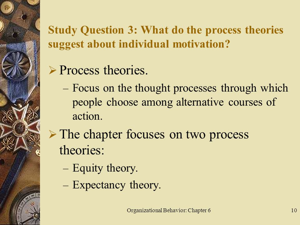Organizational Behavior: Chapter 610 Study Question 3: What do the process theories suggest about individual motivation.