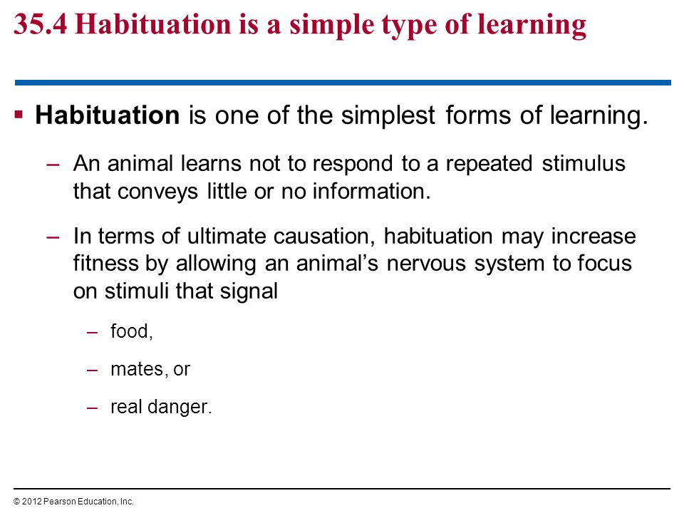  Habituation is one of the simplest forms of learning.