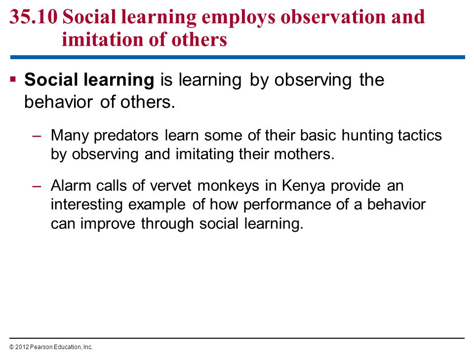 35.10 Social learning employs observation and imitation of others  Social learning is learning by observing the behavior of others.