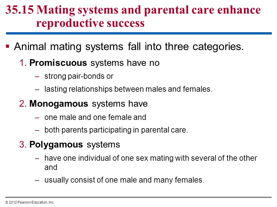 35.15 Mating systems and parental care enhance reproductive success  Animal mating systems fall into three categories.