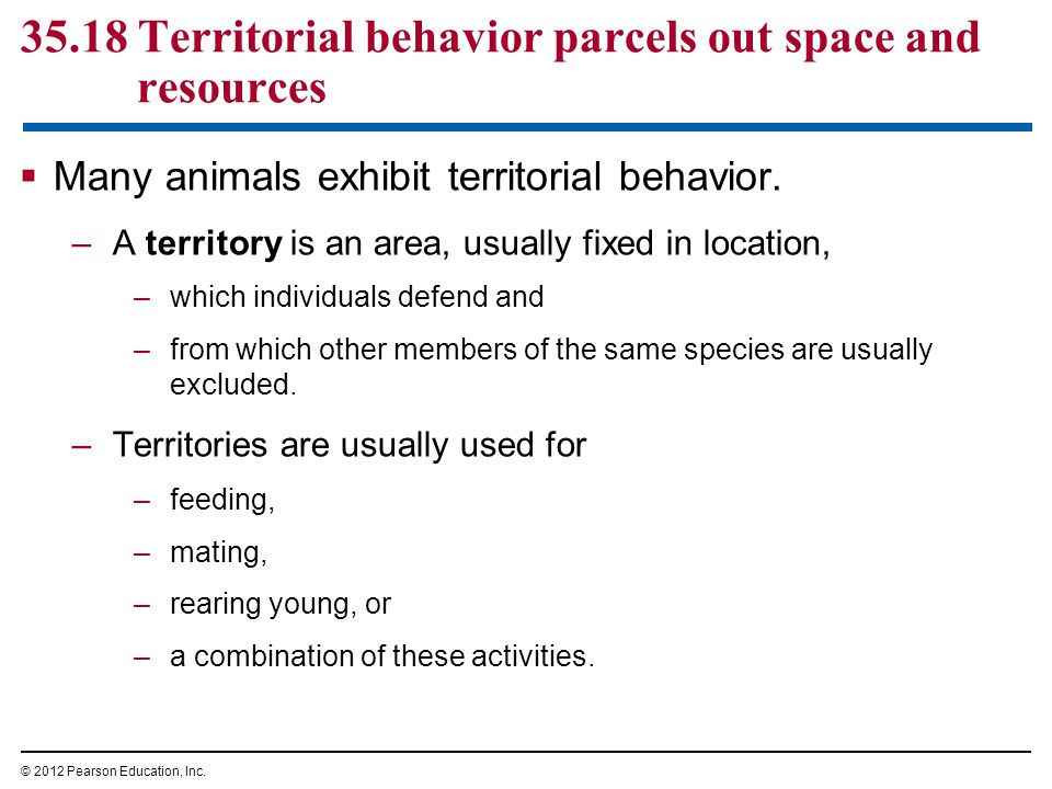 35.18 Territorial behavior parcels out space and resources  Many animals exhibit territorial behavior. –A territory is an area, usually fixed in loca