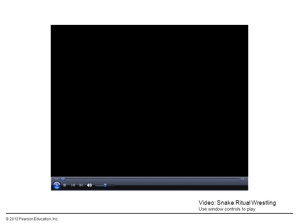 © 2012 Pearson Education, Inc. Video: Snake Ritual Wrestling Use window controls to play
