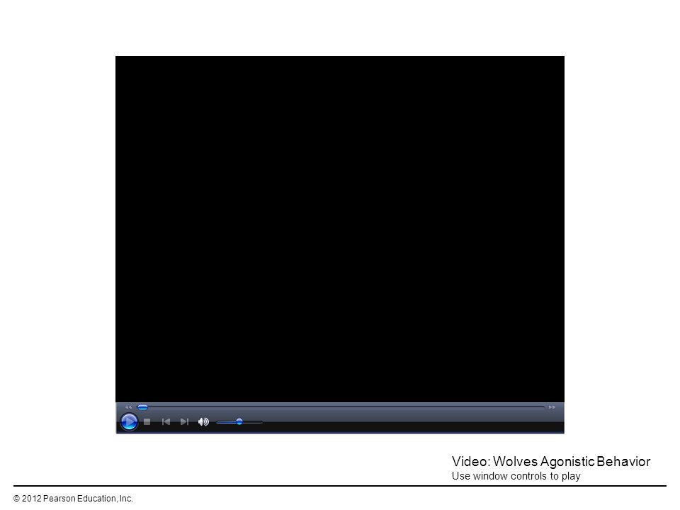 © 2012 Pearson Education, Inc. Video: Wolves Agonistic Behavior Use window controls to play
