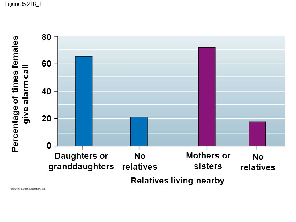 Figure 35.21B_1 Daughters or granddaughters No relatives Mothers or sisters No relatives Percentage of times females give alarm call Relatives living nearby 80 60 20 40 0