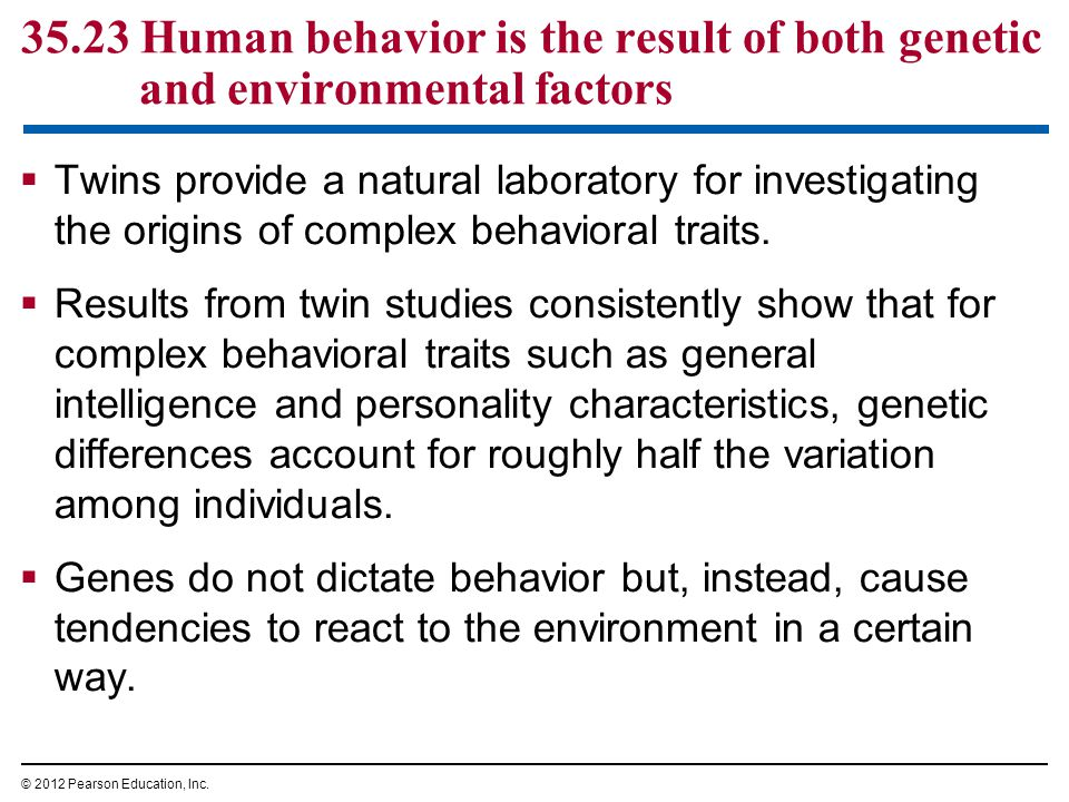 35.23 Human behavior is the result of both genetic and environmental factors  Twins provide a natural laboratory for investigating the origins of complex behavioral traits.