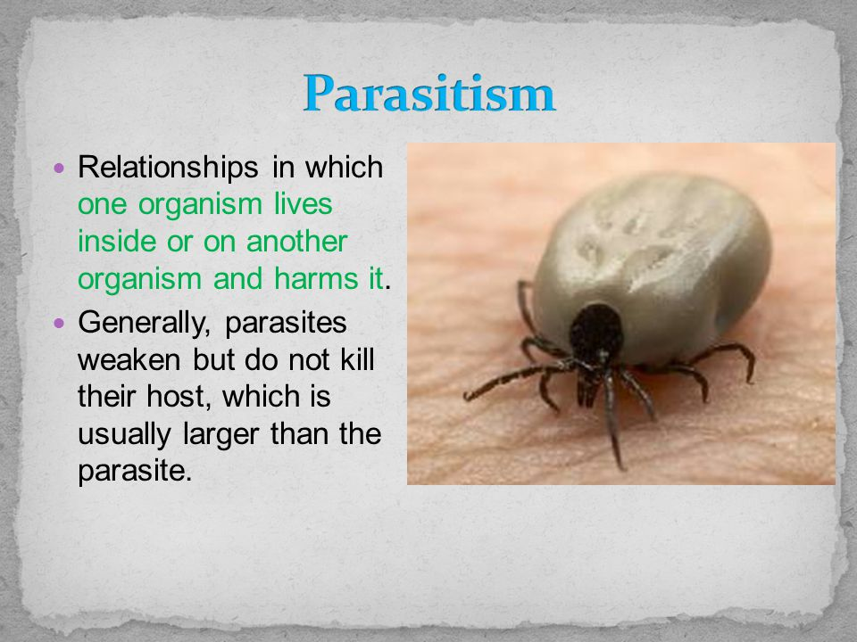 Relationships in which one organism lives inside or on another organism and harms it. Generally, parasites weaken but do not kill their host, which is