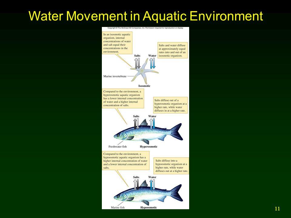 11 Water Movement in Aquatic Environment