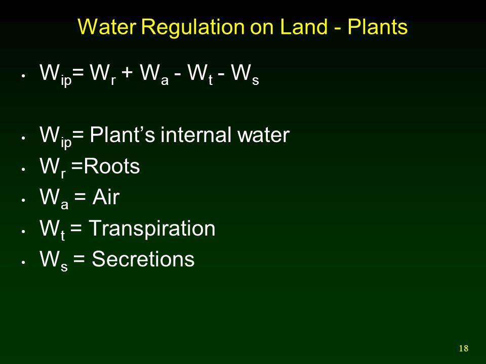 18 Water Regulation on Land - Plants W ip = W r + W a - W t - W s W ip = Plant's internal water W r =Roots W a = Air W t = Transpiration W s = Secretions