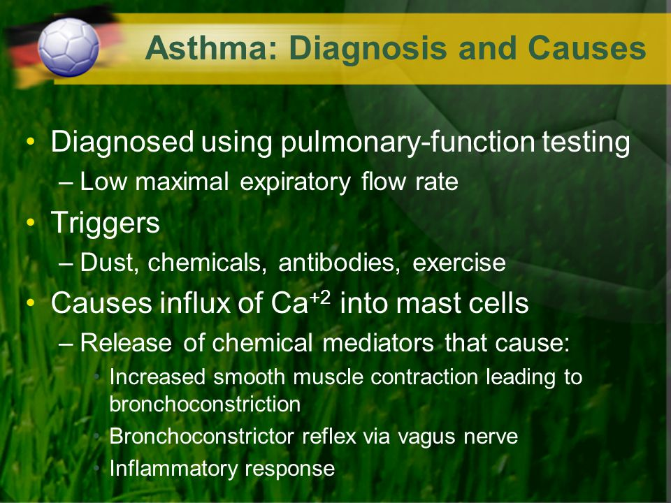 Asthma: Diagnosis and Causes Diagnosed using pulmonary-function testing –Low maximal expiratory flow rate Triggers –Dust, chemicals, antibodies, exerc