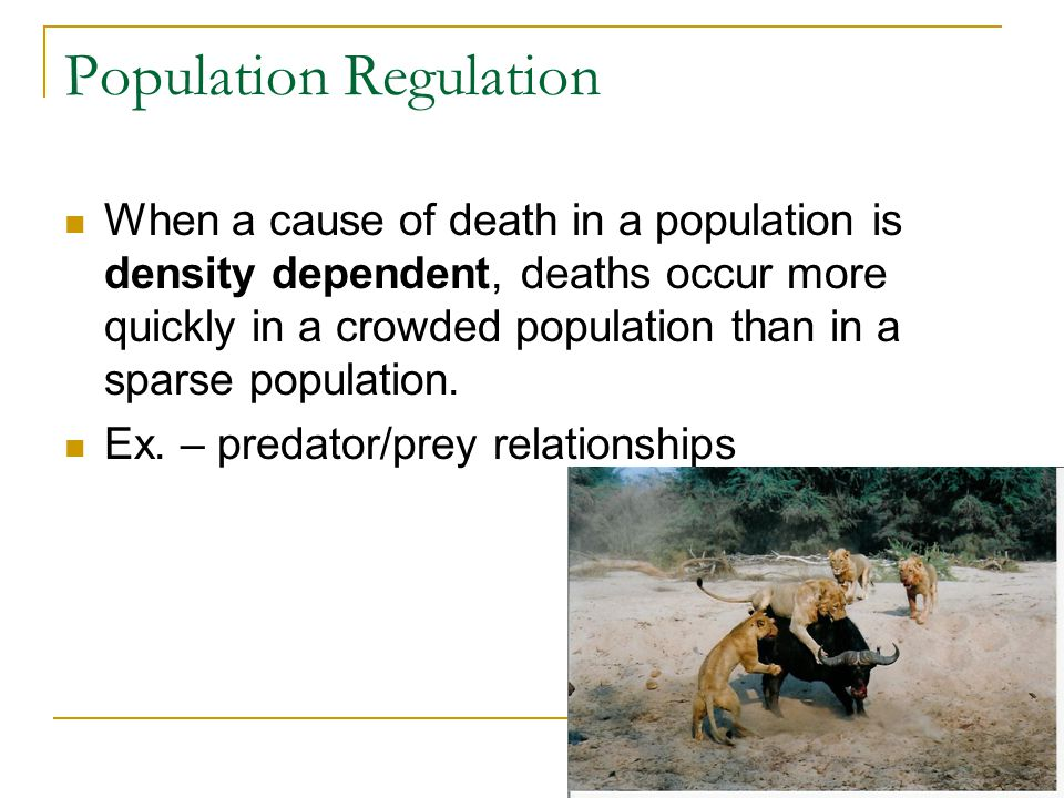 Population Regulation When a cause of death in a population is density dependent, deaths occur more quickly in a crowded population than in a sparse population.